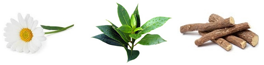 Kamille, Tea Tree en Zoethout-wortel